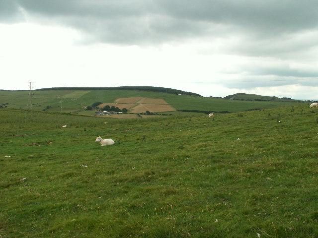 Pasture, Banc Troedrhiwseiri