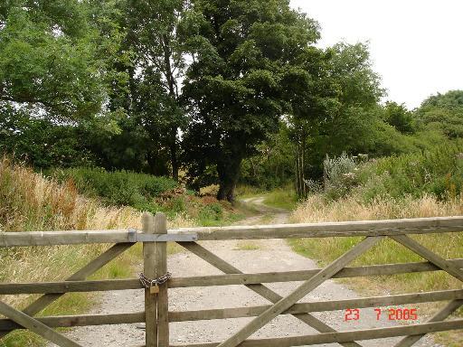 Farm track near Dolwen