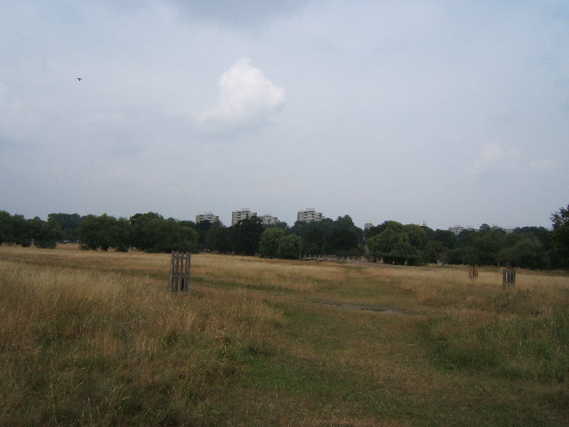 Richmond Park near the Beverley Brook