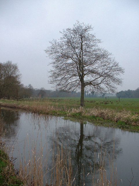 River Thet from the Peddars Way