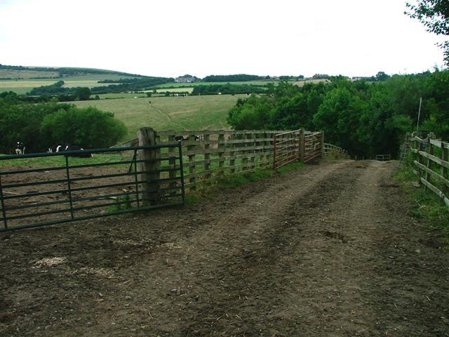 Public Footpath Heading North From Malton House Farm
