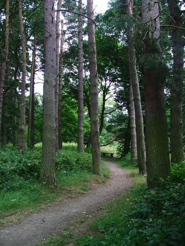 Malton Picnic Area