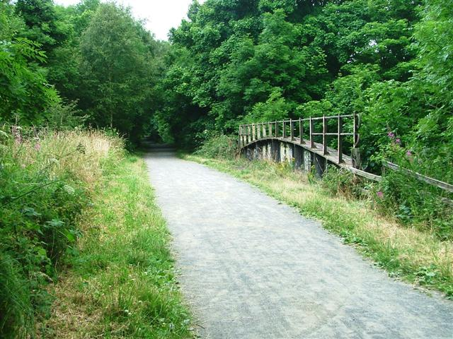 Disused Railway Bridge over the River Browney