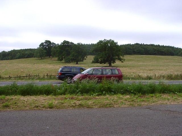 Rowland Hill's Plantation, Denton, Lincolnshire