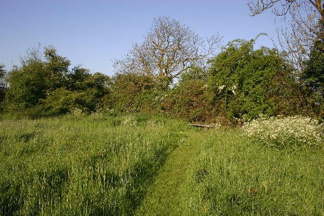 Girton nature reserve