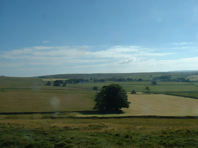 Bank Moor, near Orton