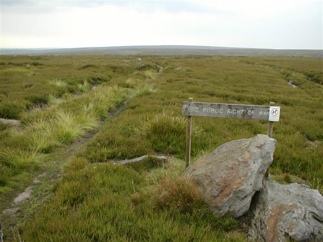 Landrover Track Across Heather Moor