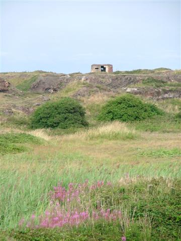 Pill Box on Former Slag Tip, Coatham Dunes