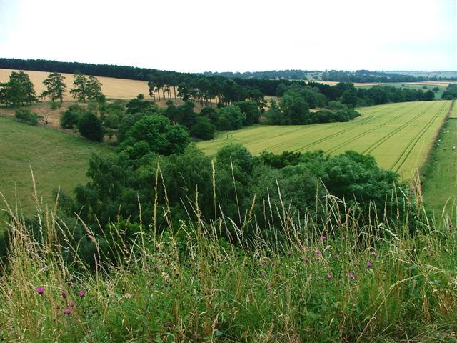 Farmland, Smallhope Burn