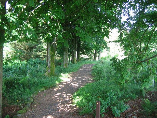 Path , Muirsheil Country Park