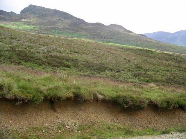 Peat moor, Glen Lednock