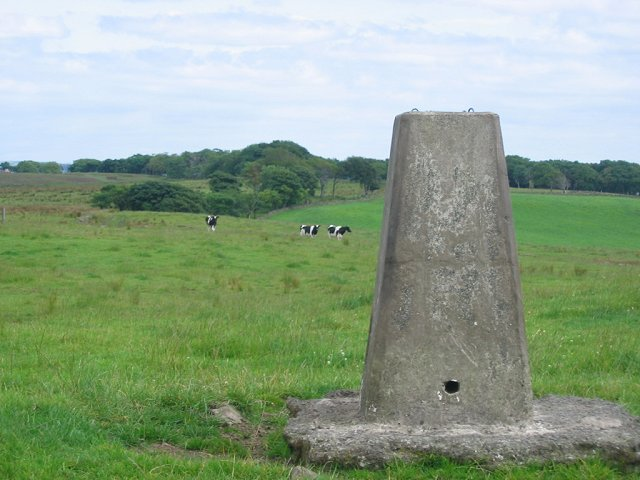 Lochlands Hill trig point.
