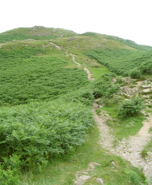 Path from Loughrigg Terrace up to the summit