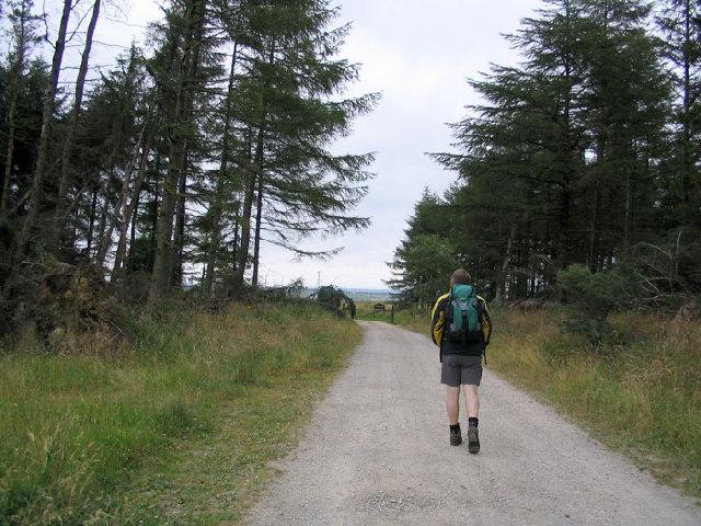 Stainburn Moor
