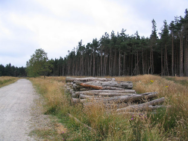 Lindley Moor Forest