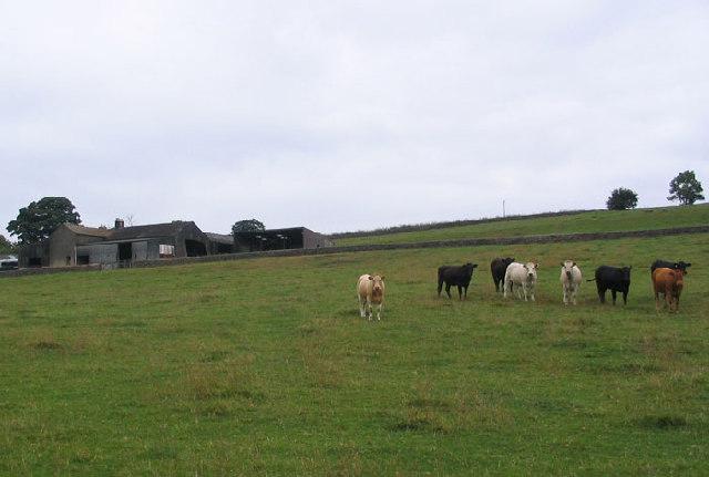 Home Farm Stainburn