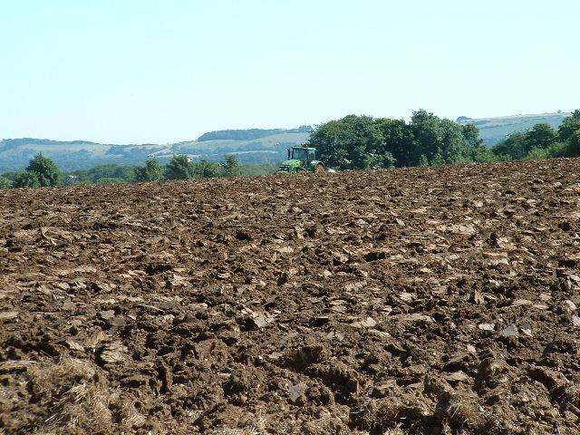 Freshly ploughed ...