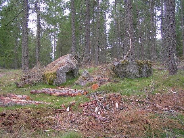 The Warlocks Stone, Sluie Woods