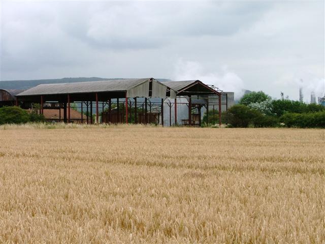 Derelict Barns, Manor Farm