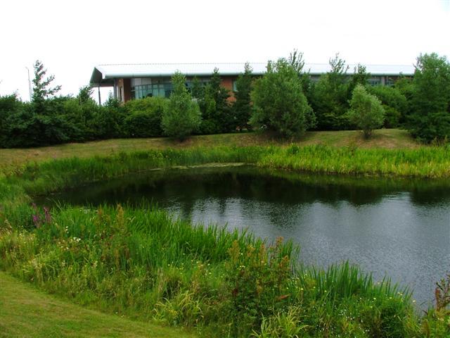 Pond, Kirkleatham Business Centre