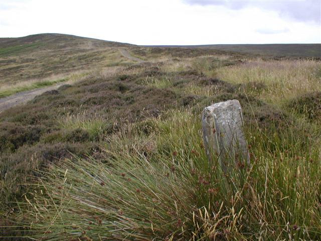 Boundary Stone, Barker's Ridge