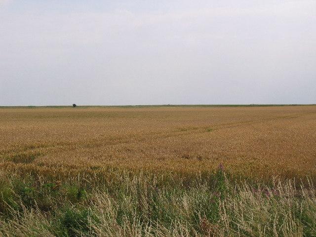 Humber Farm