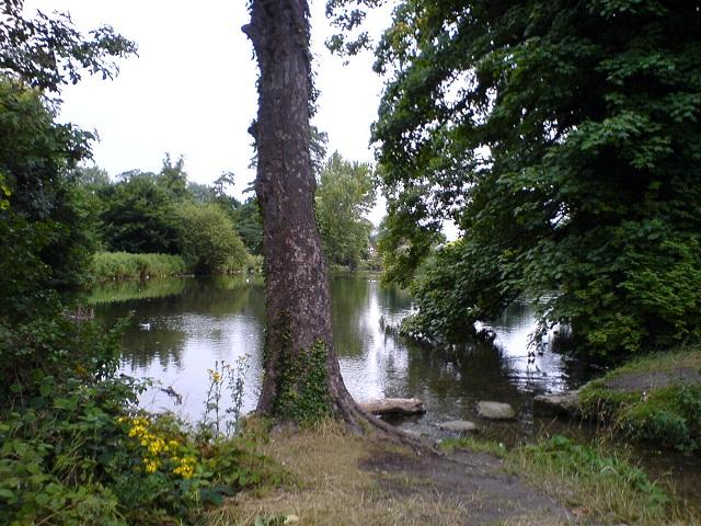 Mill Street lake