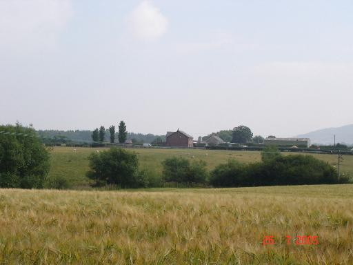 Wheat fields and farmhouse