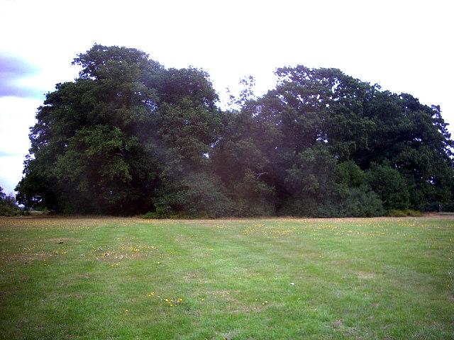 Mound, Morden Park.