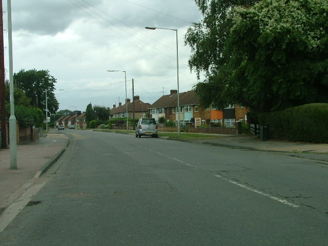 Old Hale Way