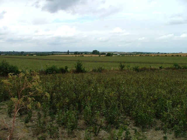 View from Arlesey New Road.