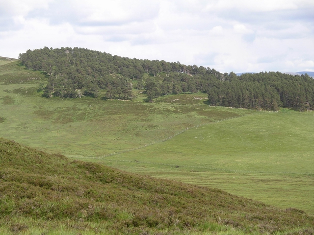 Wooded slopes and moorland