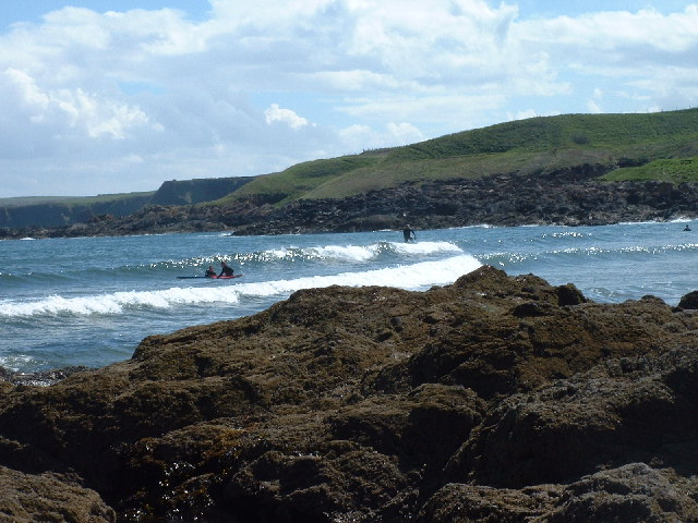 Surfers at Coldingham Bay