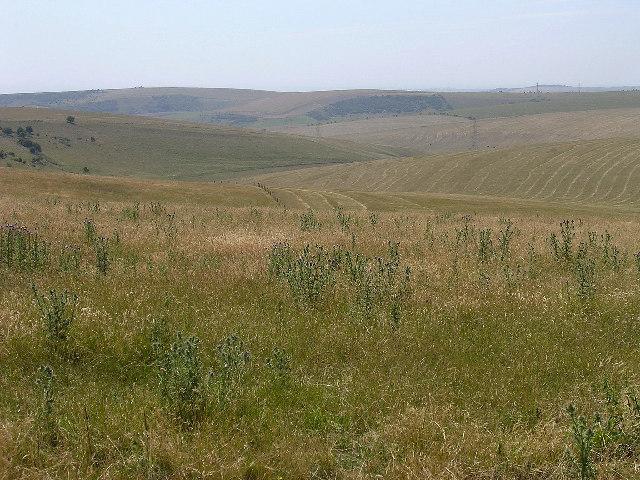 Dip slope of the South Downs escarpment