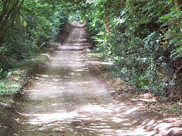 Roman Road between Corfe Mullen and Merley