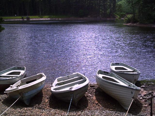 Fishing Boats on Glencorse Reservoir