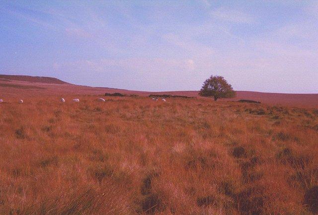 Moors above Froggatt Edge