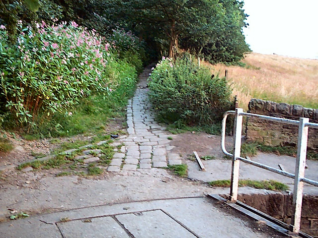 Old path from canal to Thackley
