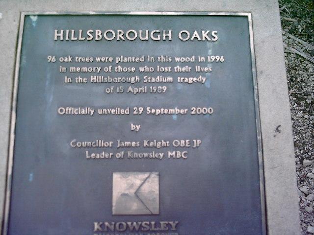 Hillsborough Oaks