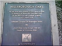 SJ4786 : Hillsborough Oaks by Sharon Crowther