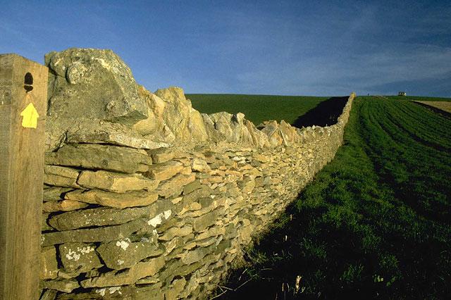 Dry stone wall near Fleet village