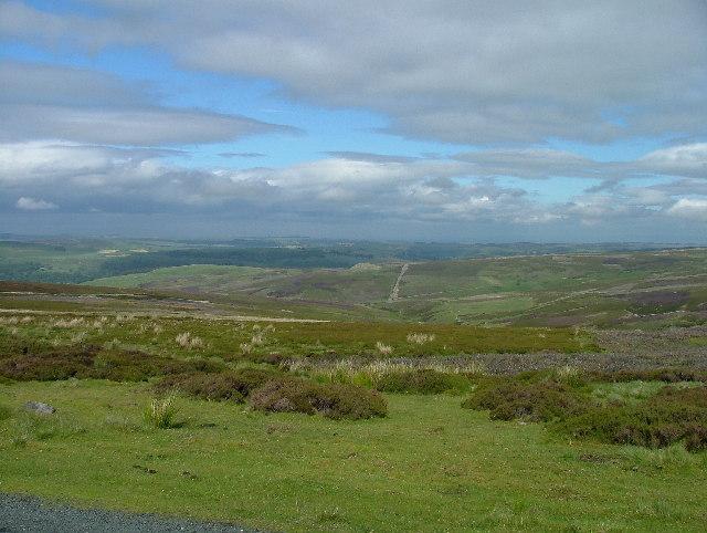 Grinton Moor