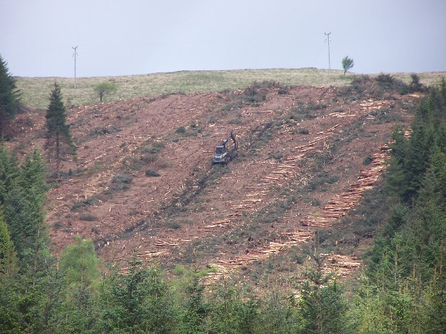 Forestry work on Meall Buidhe slopes