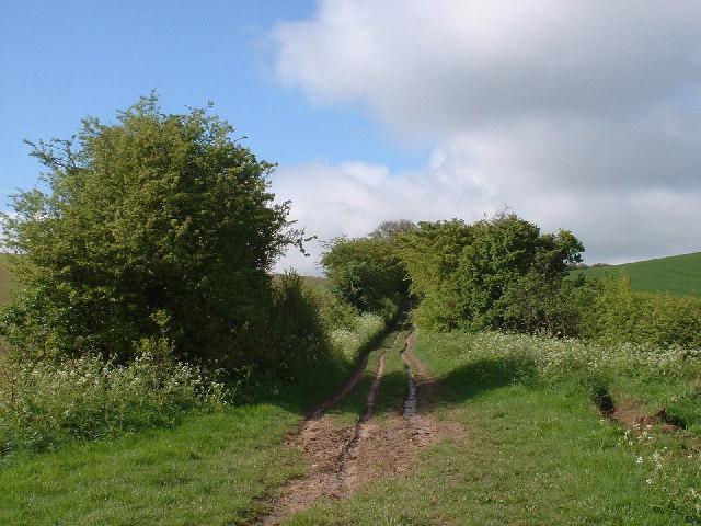 Icknield Way near Therfield