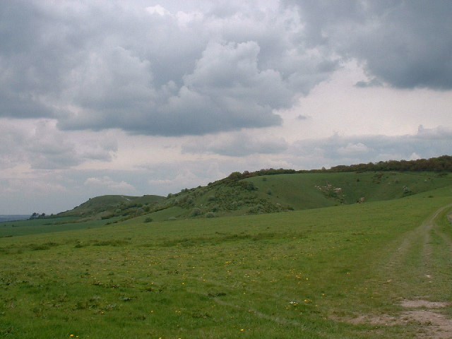 Chalk downs near Ivinghoe