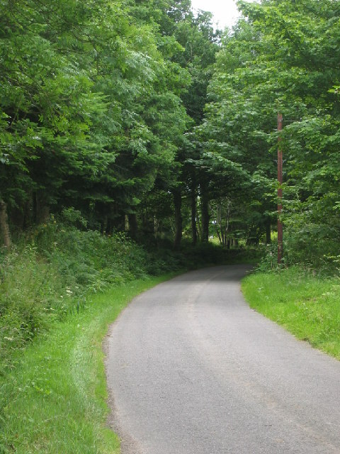 Minor road from mid Ardoe