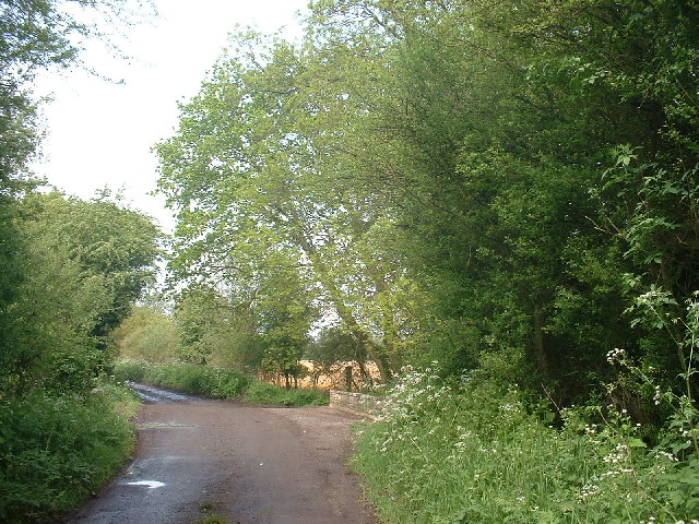 Latchford Lane