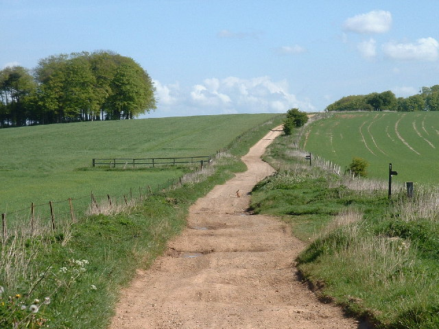 The Ridgeway track near Barbury castle