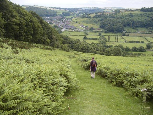 Offa's Dyke path leading down into Knighton