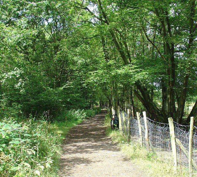 Bridleway heading towards Waggoners Farm, Near Crawley, West Sussex